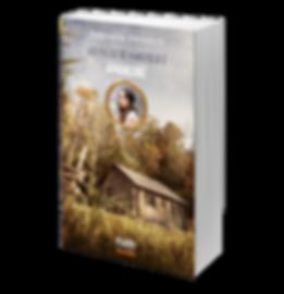 Les filles de Wakefield 2 / Amandine de Stéphanie Perreault, publié chez NUM Éditeur.