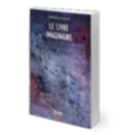 Le livre imaginaire de Gaëtan Picard, publié chez NUM Éditeur.