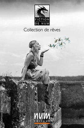 NUM Fiction (affiche)