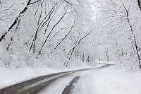 snow-1978459_960_720.jpg
