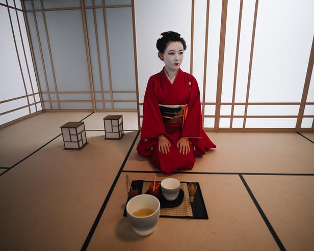 Sakura - Tea House