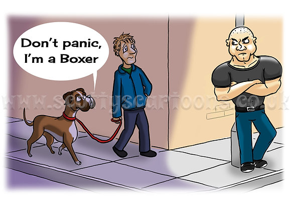 """A3 High Quality Signed Print: """"Boxer"""""""