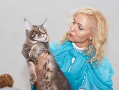 "Выставка КЛК ""Коргоруши"" 07-08.02.2015"