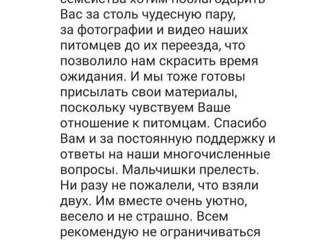 Отзыв от Сергея (Gachon и Gijas)