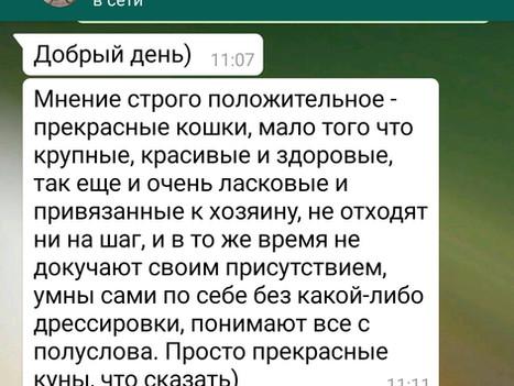 Отзыв от Алексея