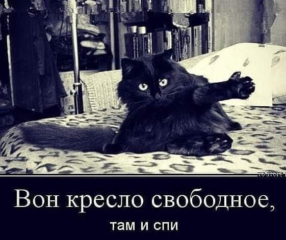 FB_IMG_1583319664135.jpg