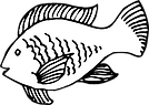 french_illu_web_fisch.png