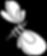 french_illu_web_biene.png