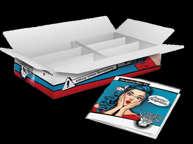 box_broschüre.png