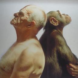 Il rapporto uomo-aninale