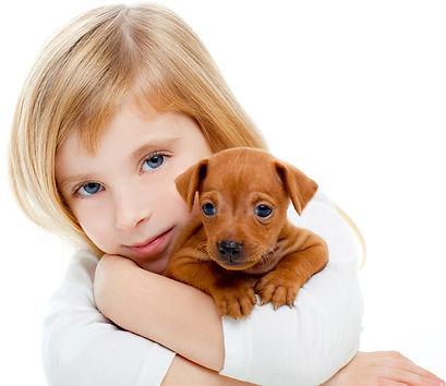 imagen2-mascotas.jpg