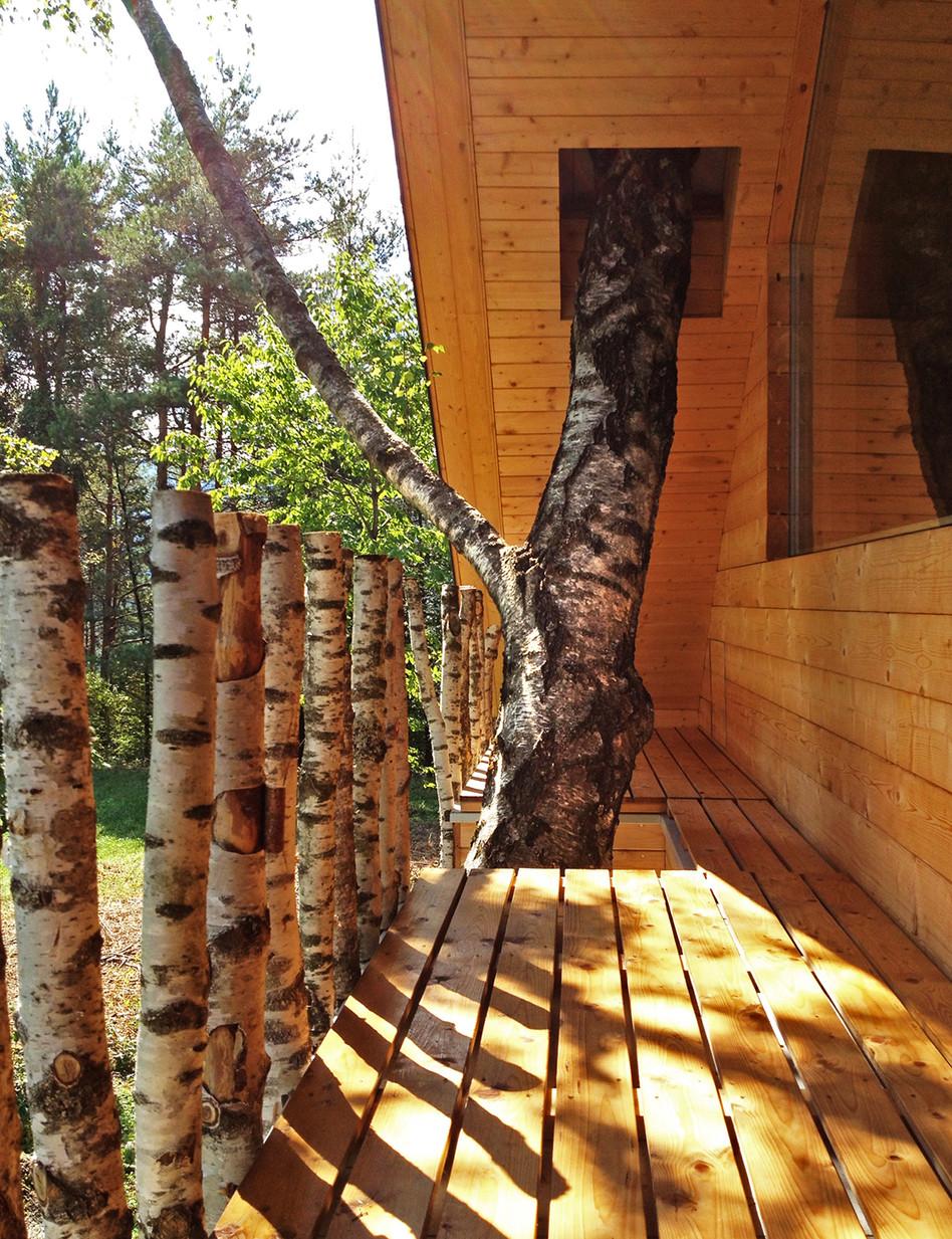 lesna hiša Dom med brezami Gašper Fabijan_08