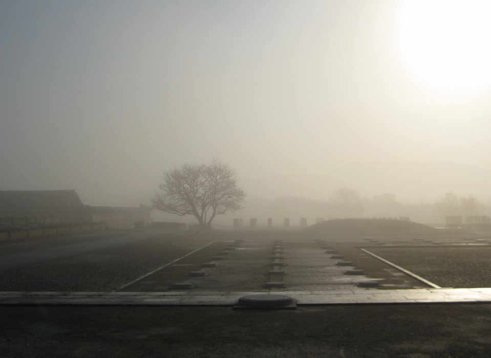 Morning view in the mist at Heijokyo ruins