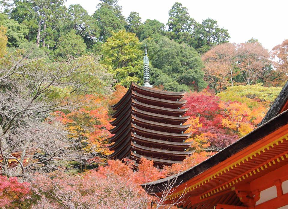 Danzan Shrine/谈山神社