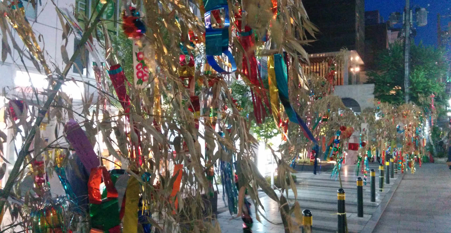 Tanabata decoration/小西通七夕装飾