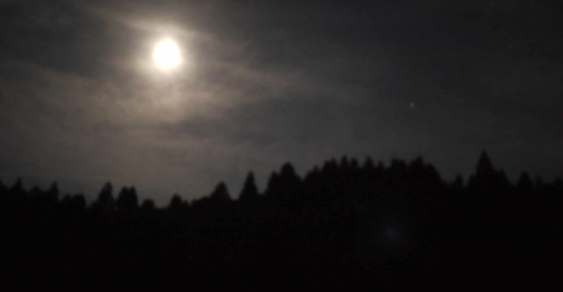 Moon wathcing in the silence