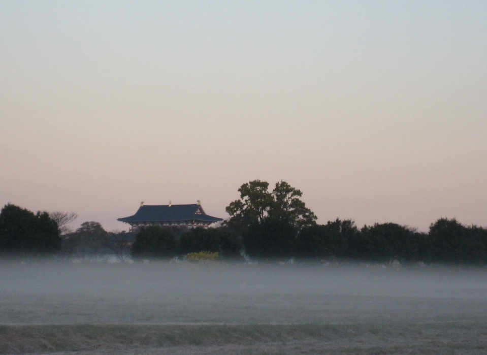 Mist before the dawn at Heijokyo ruins