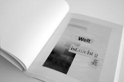 Künstlerbuch – zahlreiche