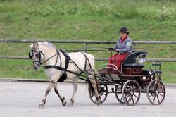 Desiree zur Leistungsprüfung in Moritzburg 2020