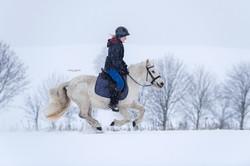 Flott unterwegs im Schnee