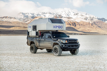 Kimbo in desert plains