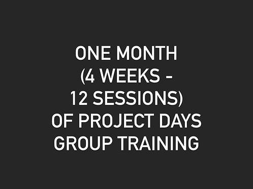 One Month of Project Days - Newark, DE