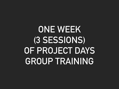 One Week of Project Days - Newark, DE
