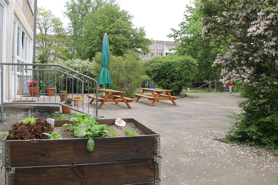 Freifläche Kindergarten
