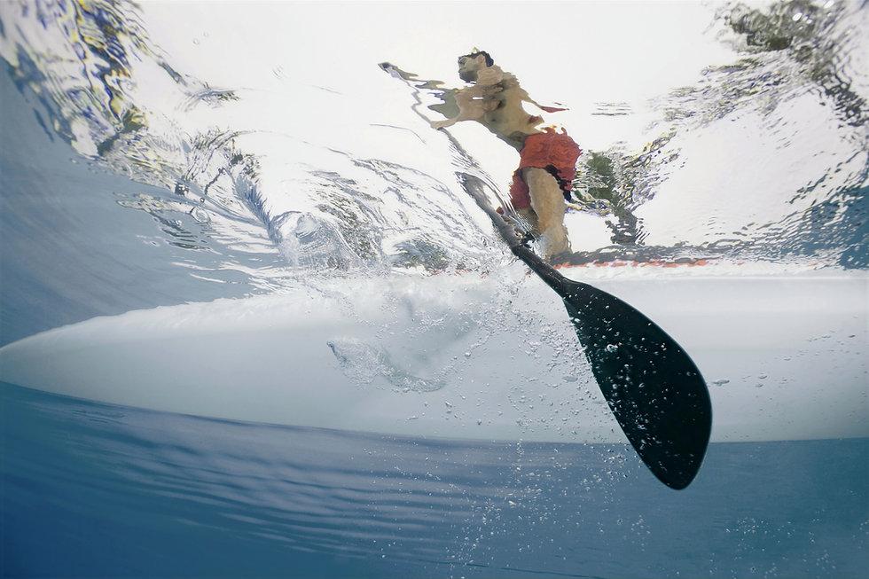 Paddleboarding_Restore_Pelvic Health_CA