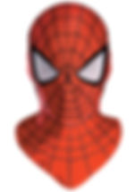 deluxe-adult-spiderman-mask.jpg