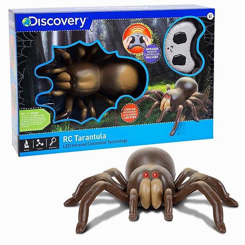 Discovery Kids Remote Control Tarantula