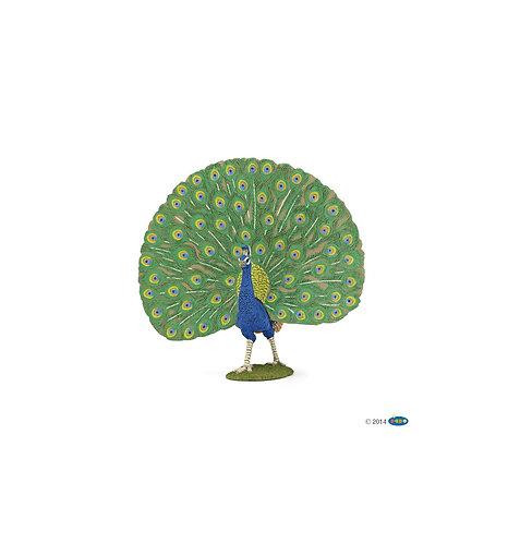 Papo 51161 - Peacock