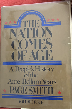 The Nation Comes of Age - Volume 4