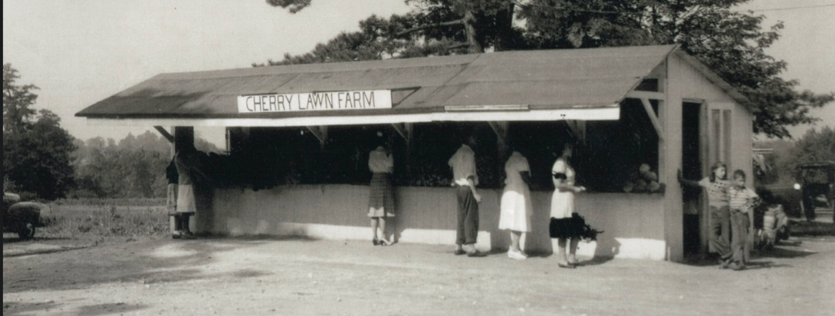 Cherry Lawn Stand