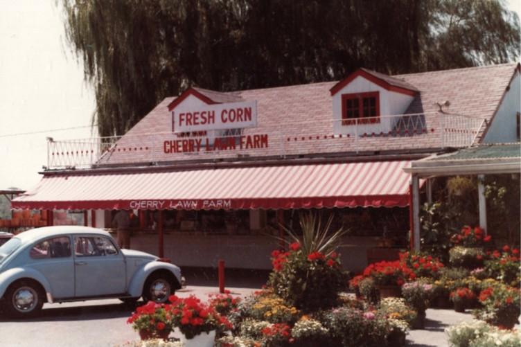 70s Cherry Lawn