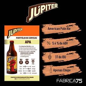 Jupiter_APA_padrão.jpg