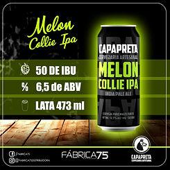 Artepadrão_Melon_ipa.jpeg