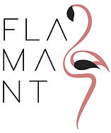 LOGO FLAMANT.png