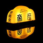 Tokyo Lights (Puma)