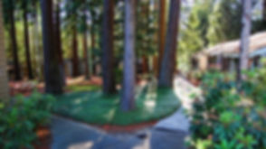 Trees-Cabins-Sunlight_1920x1080_L.jpg