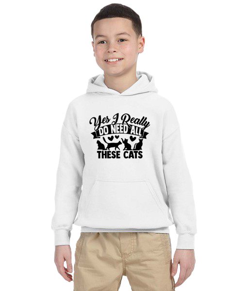 Kids Hoodie-Need All These Cats