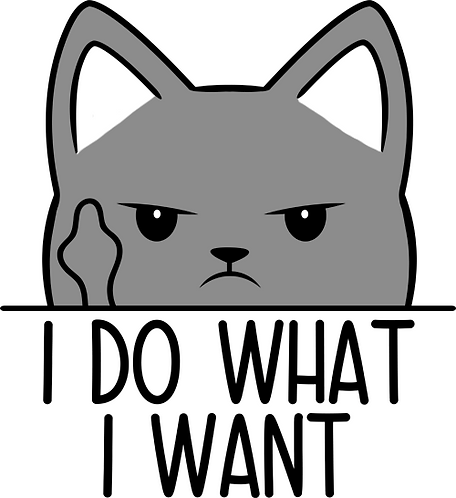 Decal- Do What I Want