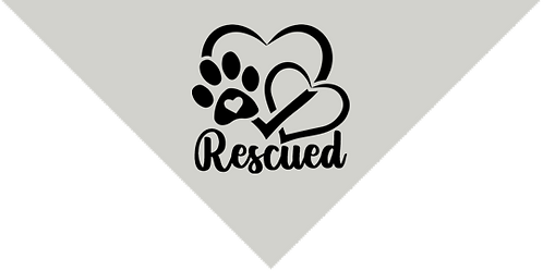 Bandana- Rescued