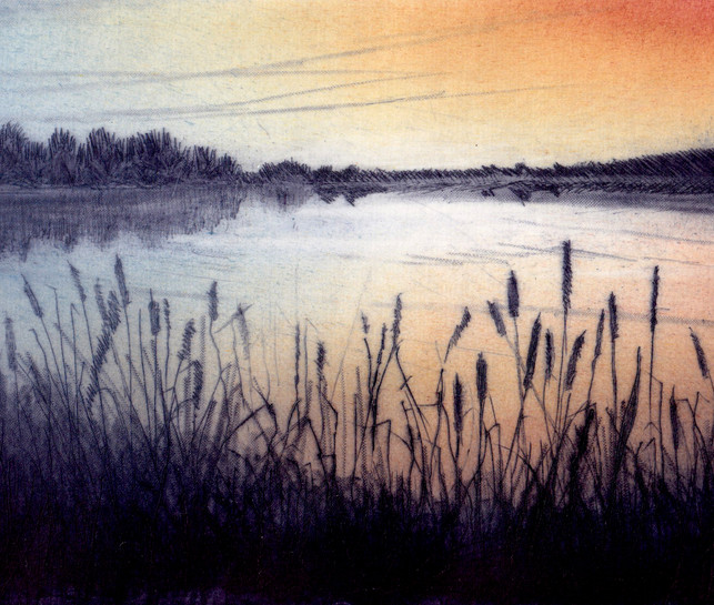 'Beyond the Reedbeds'
