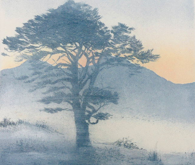 'Early Morning Mist'