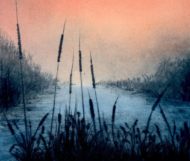 'Reedbeds, Evening'