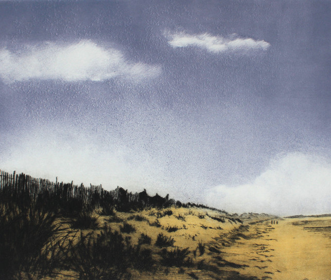 'Aside the Dunes'