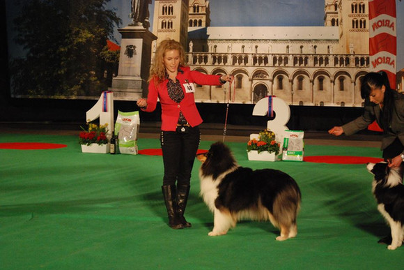 Frida on IDS Pécs as BOB in the main ring