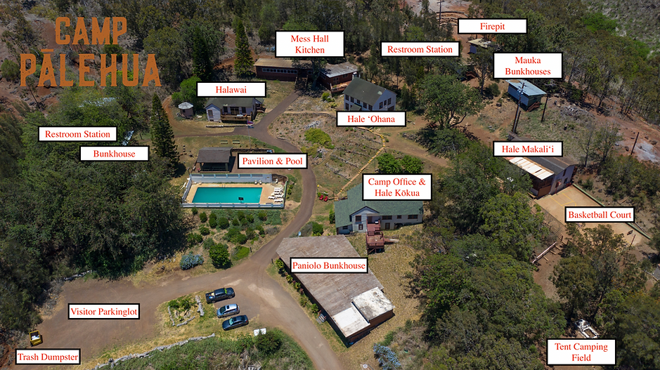 Camp Map Image.png