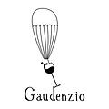 gaudenz.png